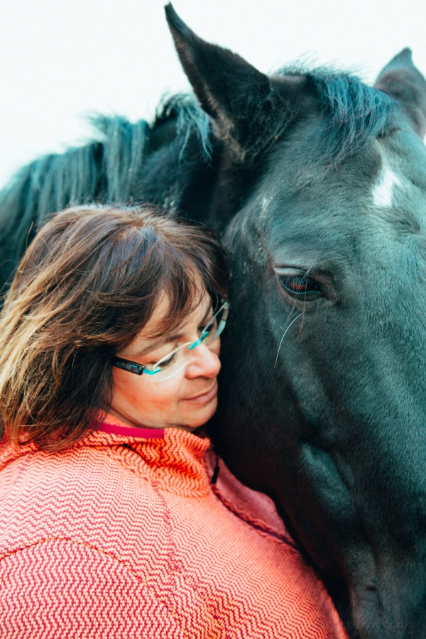 Pferde Liebe